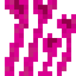 Pink Coral.png